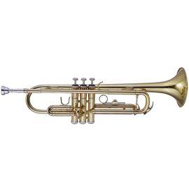 Труба MAXTONE TTC23L, фото