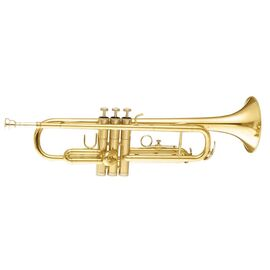 Труба MAXTONE TTC30L (TTC1C), фото