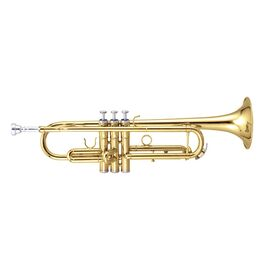 Труба MAXTONE TTC60L2 (TTC234L), фото