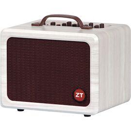Акустичний комбо ZT Lunchbox Acoustic, фото