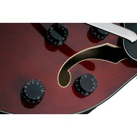 Электроакустическая гитара SCHECTER CORSAIR W/BIGSBY GWAL, фото 7