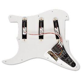 Іменна панель David Gilmour (Pink Floyd) EMG DG20 IVORY, фото 2
