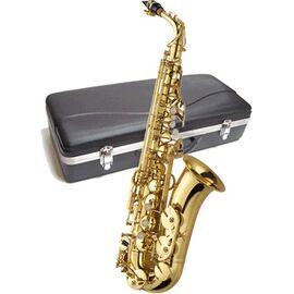 Саксофон J.MICHAEL AL-500 Alto Saxophone, фото 2