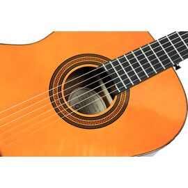 Гітара класична EPIPHONE PRO-1 CLASSIC 1.75, фото 3