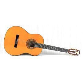 Гітара класична EPIPHONE PRO-1 CLASSIC 1.75, фото 7