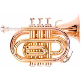 Труба Odyssey OCR100P, фото