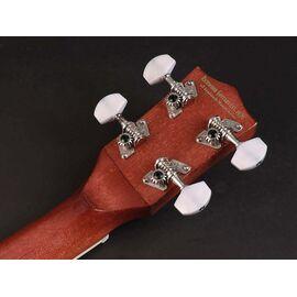 Банджо Richwood RMBU-404, фото 4