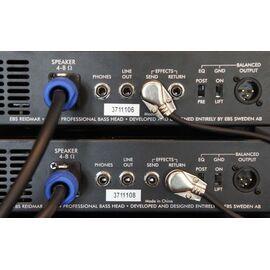 Басовий підсилювач EBS RD250 Reidmar, фото 2