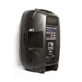 Активная акустическая система Maximum Acoustics Digital PRO.15 BLU, фото 3