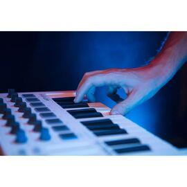 MIDI-клавіатура / Контролер Arturia Minilab MKII, фото 9