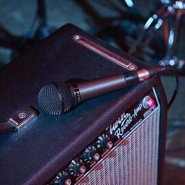 Вокальний мікрофон Audio Technica ATM510, динамічний, кардіоїдний, фото 8