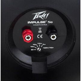Инсталляционная акустика PEAVEY Impulse 5c Black, фото 5