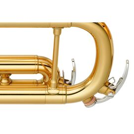 Труба YAMAHA YTR-4335G II, фото 3