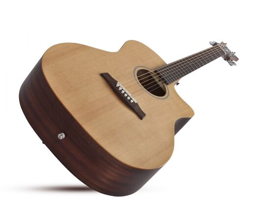 Акустична гітара SCHECTER DELUXE ACOUSTIC NS, фото 2