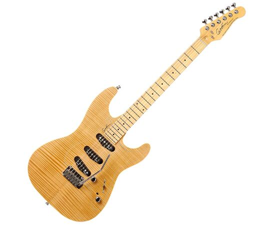 Электрогитара GODIN 31085 Passion RG3 Natural Flame MN with Tour Case, фото