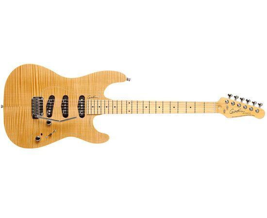 Электрогитара GODIN 31085 Passion RG3 Natural Flame MN with Tour Case, фото 2