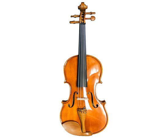 Скрипка MAXTONE TV4/4TGA, фото 1
