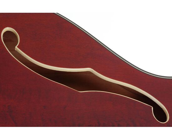 Электроакустическая гитара SCHECTER CORSAIR W/BIGSBY GWAL, фото 8
