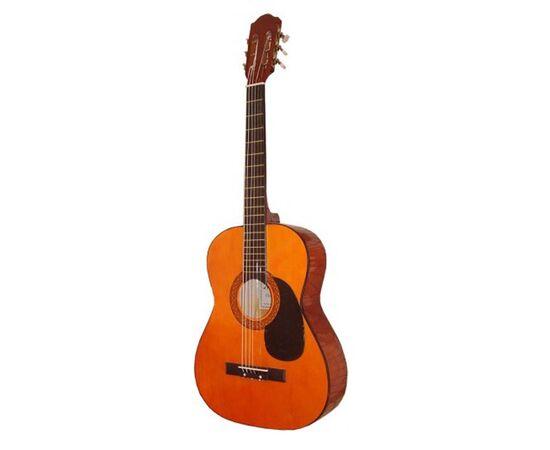 Акустическая гитара MAXTONE WGC360, фото