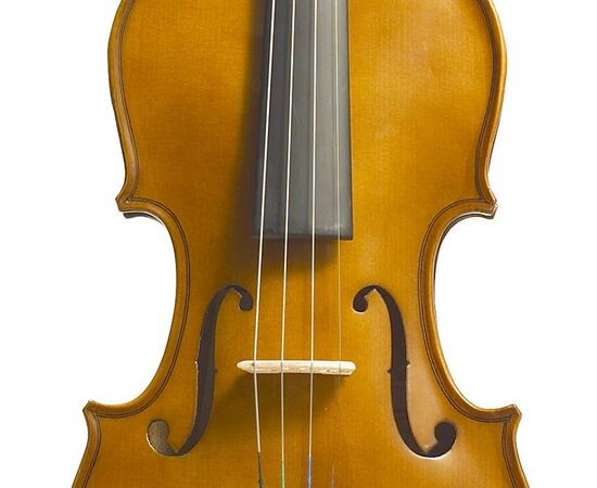 Скрипка STENTOR 1400/A STUDENT I VIOLIN OUTFIT 4/4, фото 2