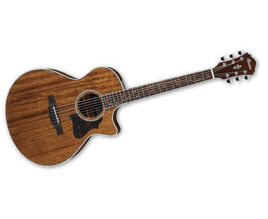Акустична гітара IBANEZ AE245 NT, фото 2