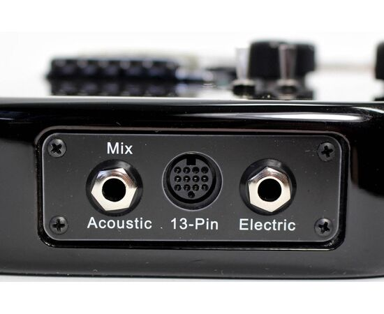 Электрогитара GODIN 025503 XTSA Leaftop Trans Black (с чехлом), фото 9