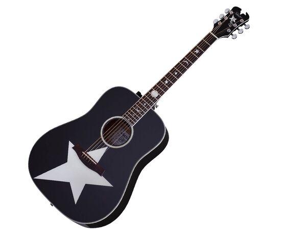 Акустична гітара з підключенням SCHECTER RS -1000 STAGE ACOUSTIC, фото