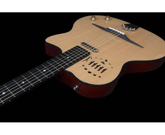 Электроакустическая гитара GODIN 047109 Multiac Gypsy Jazz (с кофром), фото 14