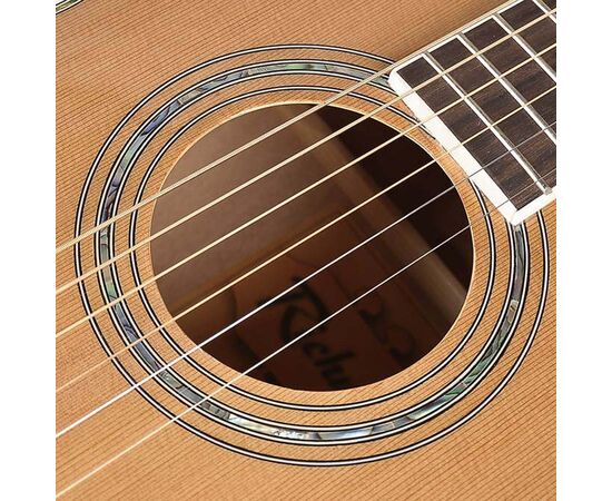 Гитара акустическая Richwood RV-70-NT blues guitar, фото 5