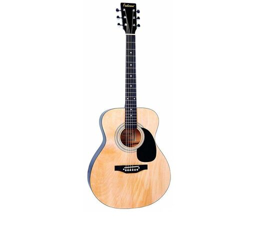 Акустическая гитара Falcon F300N, фото