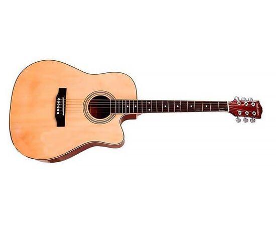 Акустична гітара PARKSONS RFG111-41CNF, фото