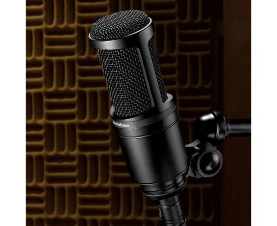 Микрофон AUDIO-TECHNICA AT2020, фото 6